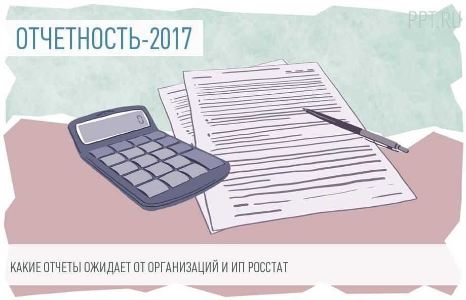 Статистическая отчетность за 2017 год