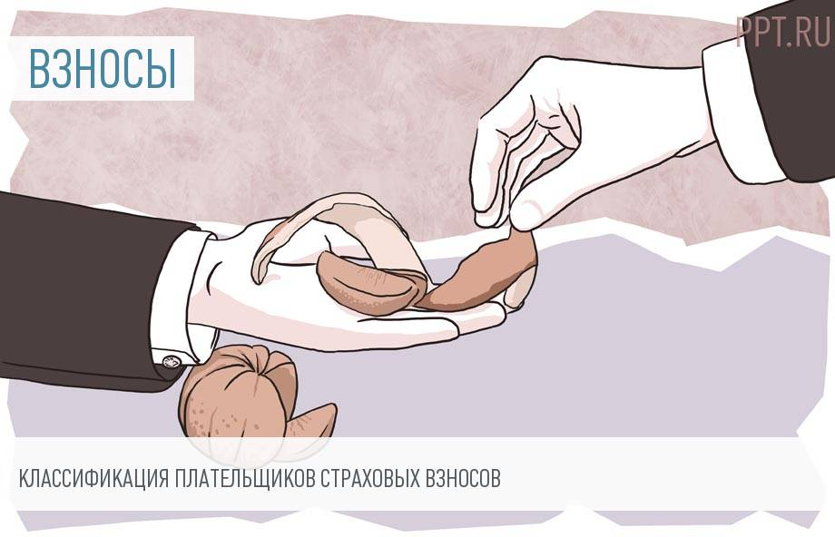 Категории плательщиков страховых взносов