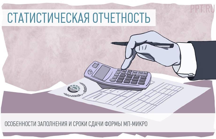 Отчетность микропредприятий в 2018 году. Заполнение формы МП-микро