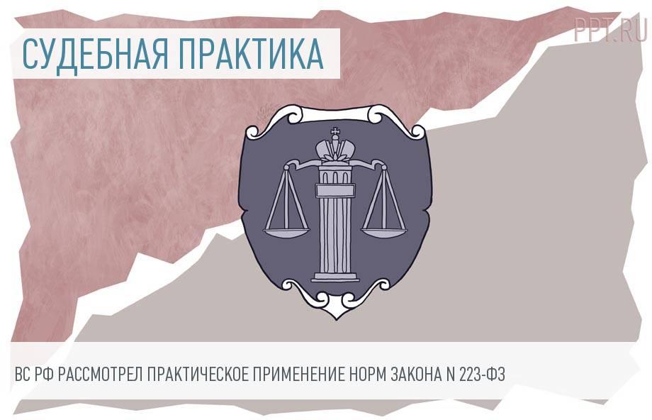 Верховный суд опубликовал обзор практики по госзакупкам